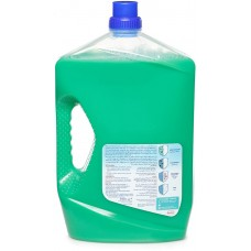 DAC Pine Super Disinfection - 3 L